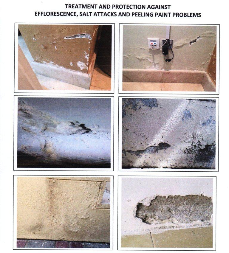 Treatment and Protection Against Efflorescence, Salt Attacks and Peeling Paint Problems