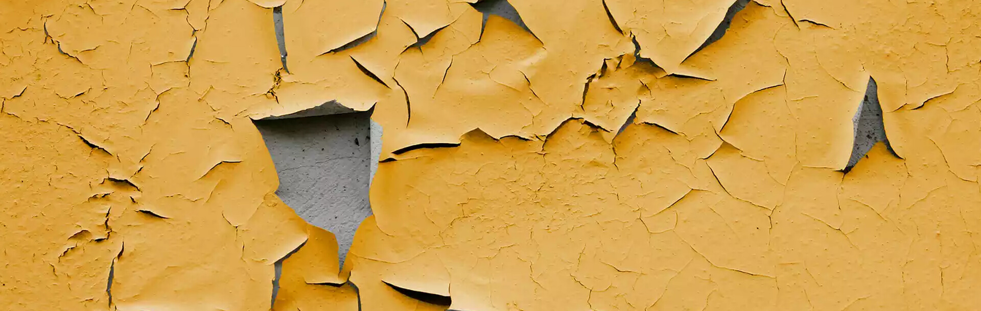 SOLUTION TO PEELING PAINT & EFFLORESCENCE